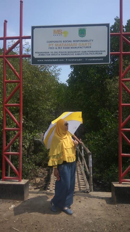 wisata mangrove nguling